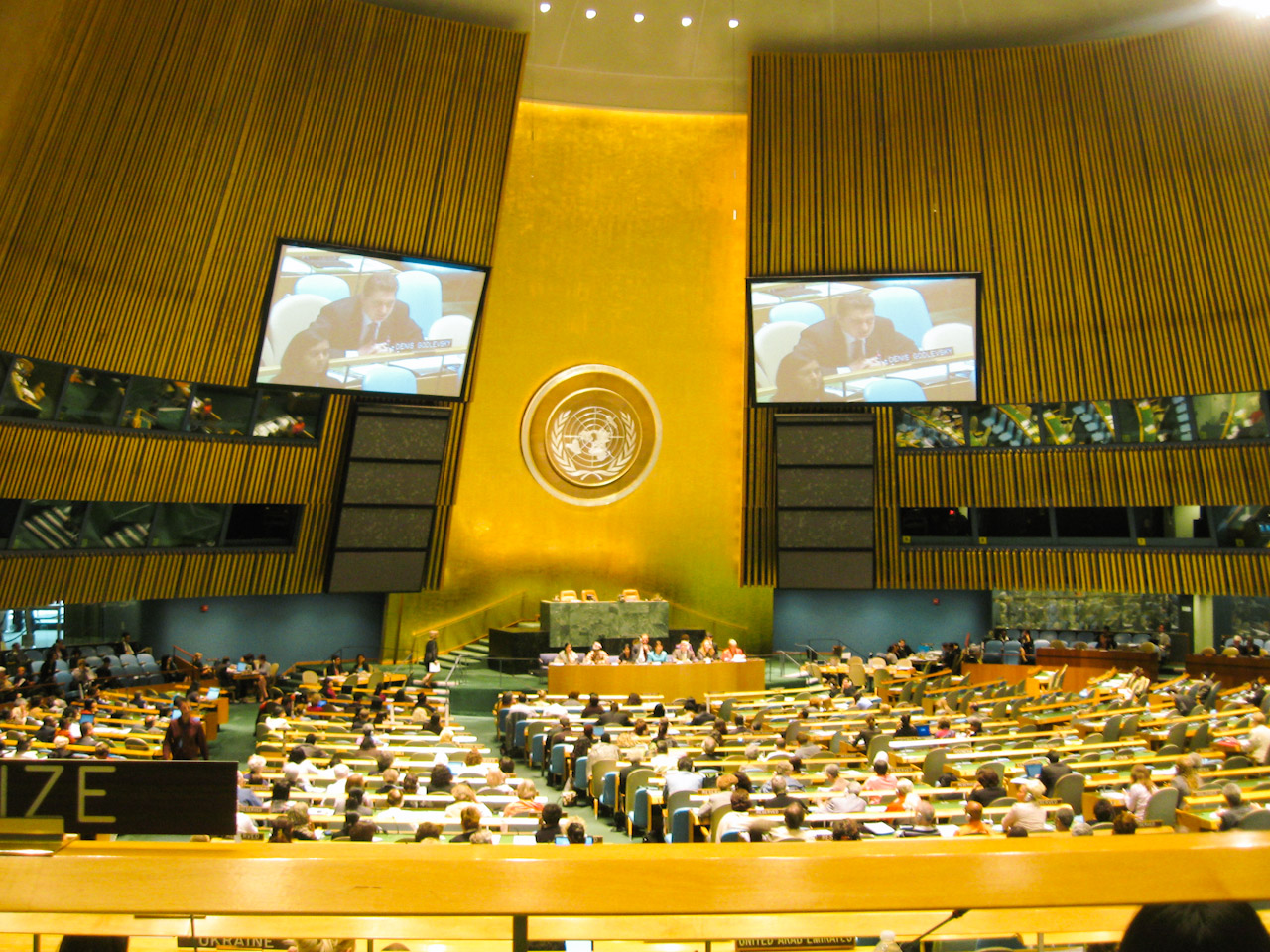 MDG 2010 summit informal hearings
